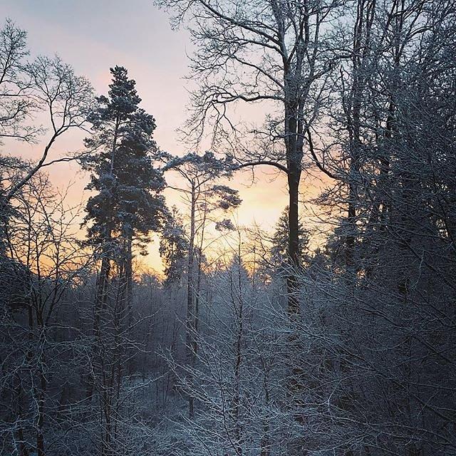 #volksdorf #winter #winterwonderland #hamburg #snow